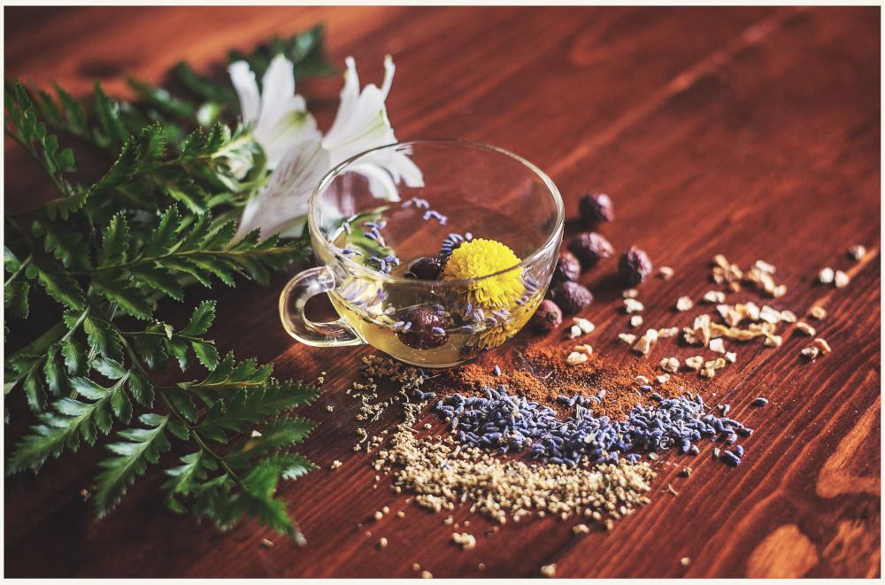 Dunya-nutricion-y-fitoterapia